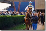Loudeac Easter Races